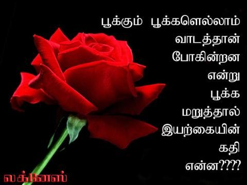 Friendship Kavithai Images Google Search Friendship Words Image