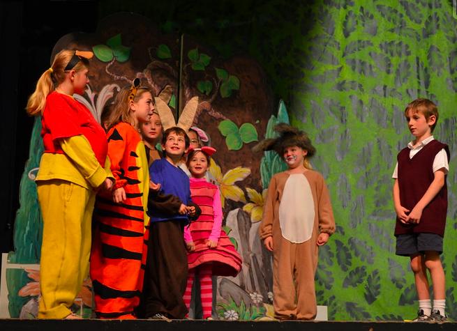 075274374591 Winnie the Pooh kids musical - Tigger costume