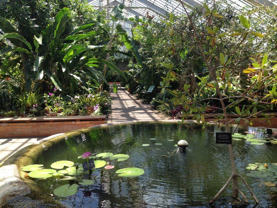 Conservatory At Matthaei Botanical Gardens At The University Of Michigan In Ann  Arbor, Michigan