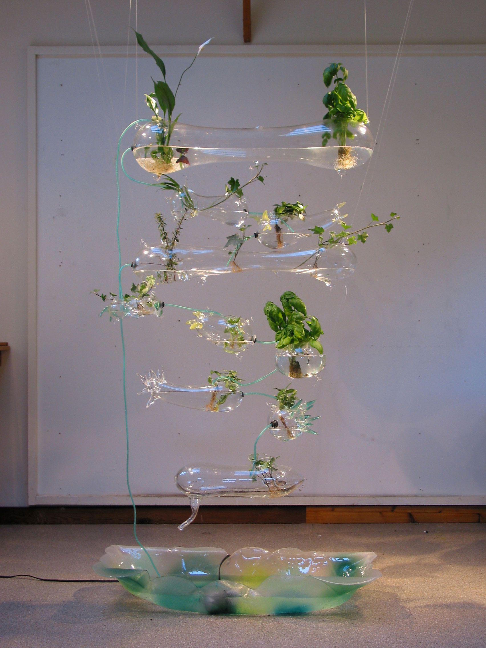 Butterfly garden design hydroponic herb garden hydroponics