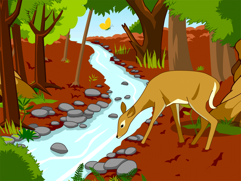 This Science Resource Page With Lesson Plans And Teaching Tips For K 3 Students Introduces Woodl Animal Habitats Temperate Deciduous Forest Animal Adaptations
