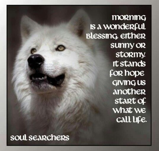 #Morning Is A Wonderful Blessing. Either Sunny Or Stormy