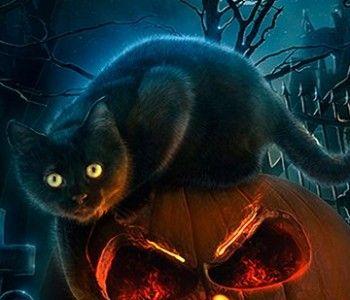 Montage Sonore Effrayant Sonnerie Halloween Gratuite Fond D Ecran Halloween Affiche Halloween Fond Ecran Halloween