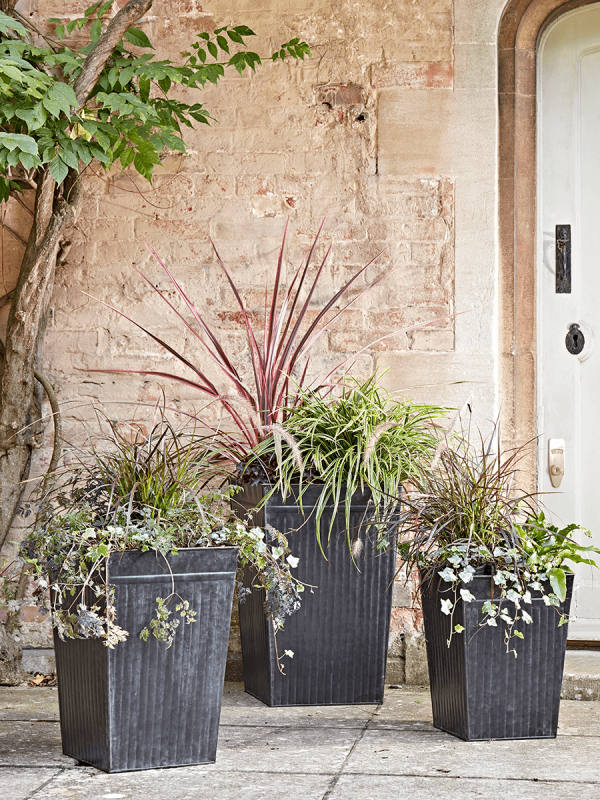 New Three Tall Ribbed Zinc Planters Zinc Planters Concrete