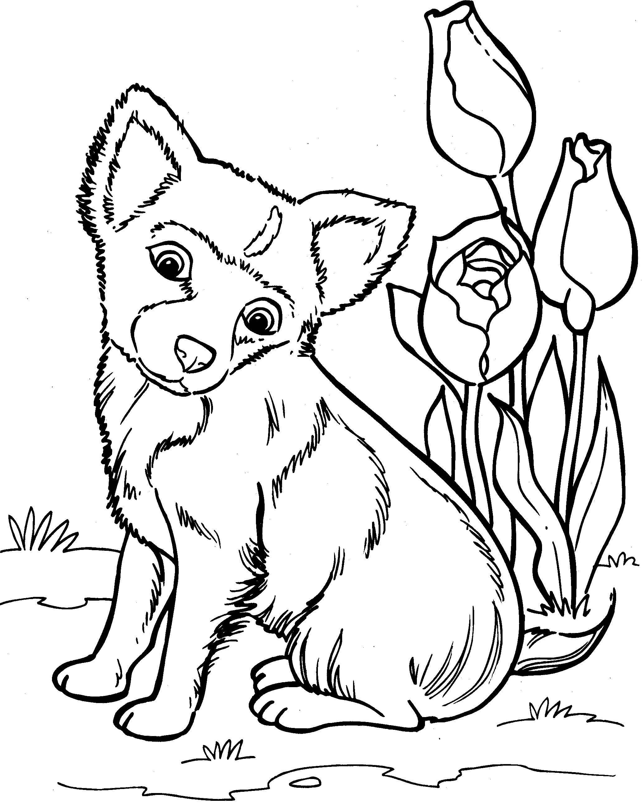 Puppy Coloring Pages Dog Coloring Page Dog Coloring Book