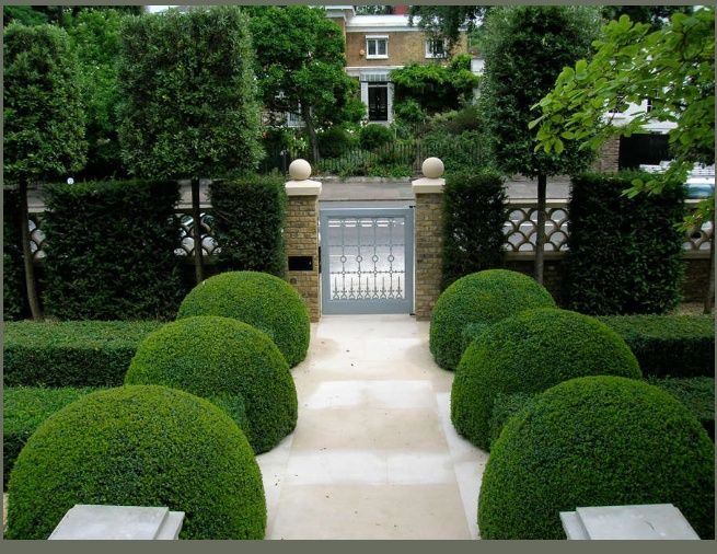 Superb Precise Topiary (del Buono Gazerwitz Landscape Architecture). Description  From Pinterest.com. I Searched For This On Bing.com/images | Garden Ideas  ...