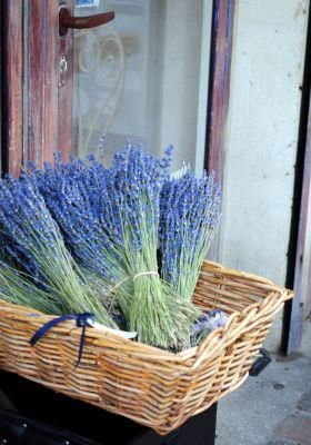 lavender oil in closets to keep away moths.