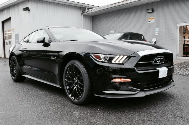 2015 Ford Mustang Gt 50th Anniversary Rhinebeck Ny