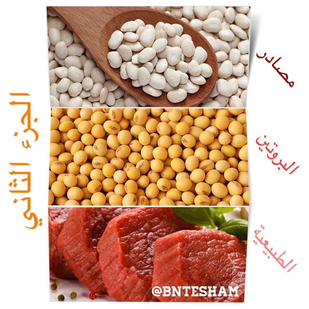 مصادر البروتين الجيد مع نسب البروتين Upset Stomach Protein Sources Nutritious