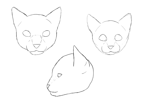 How To Draw Animals Cats And Their Anatomy Tuts Design