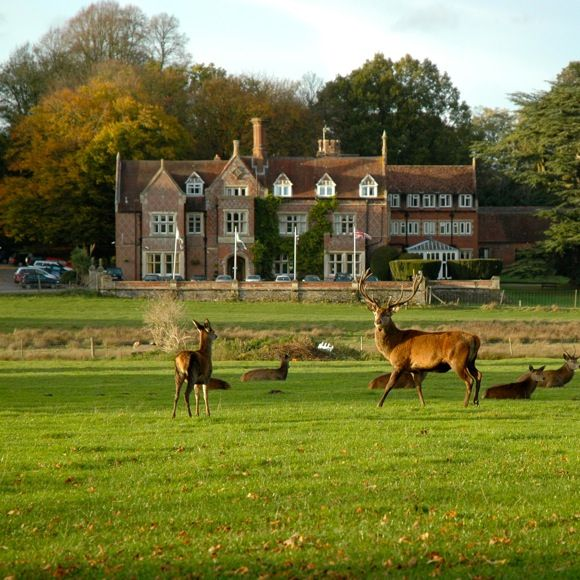 Burley Manor Hotel New Forest Accommodation