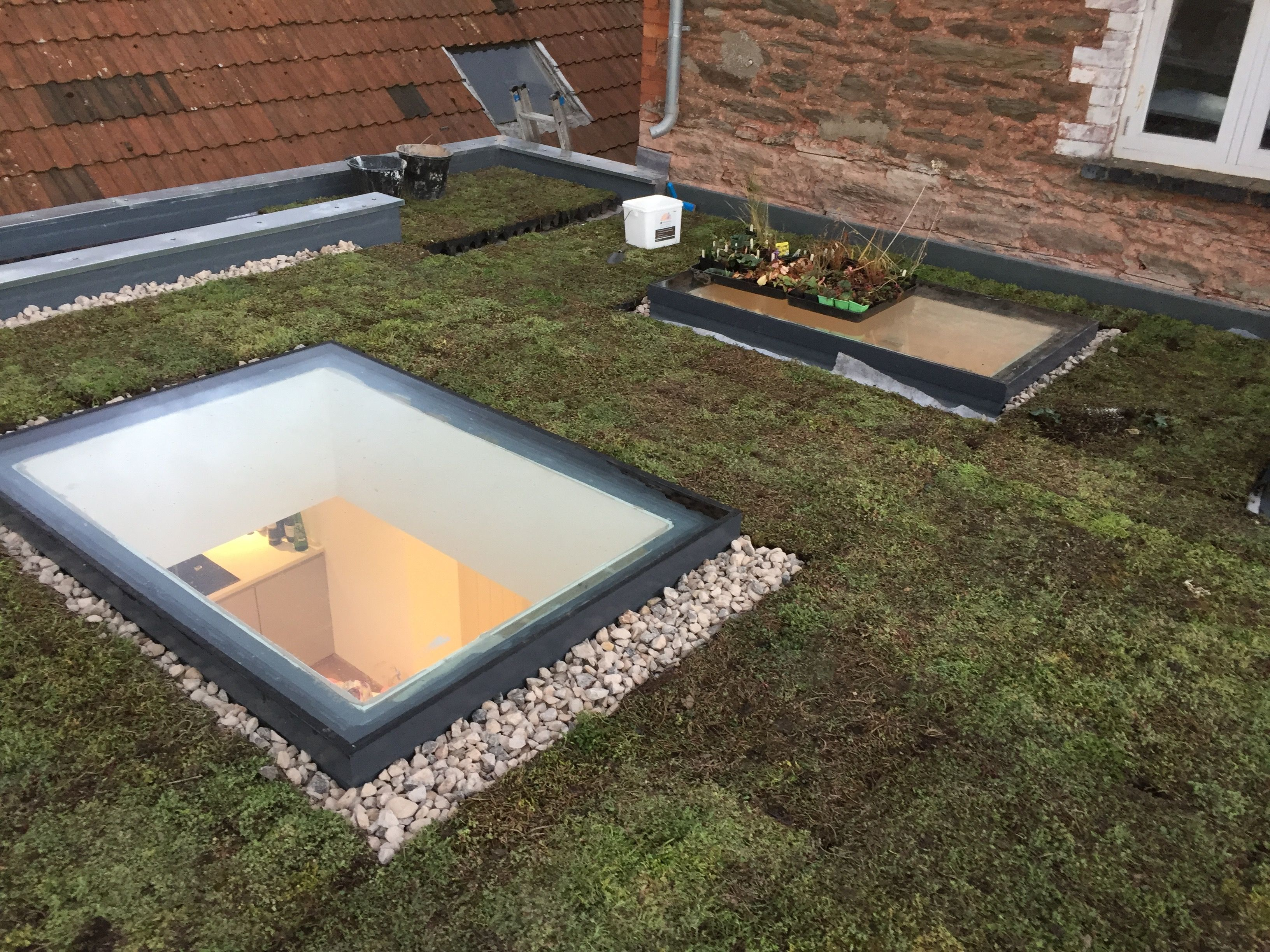 Gruffe Kit Sedum Green Roof Shed Roof Design Green Roof System Roof Design