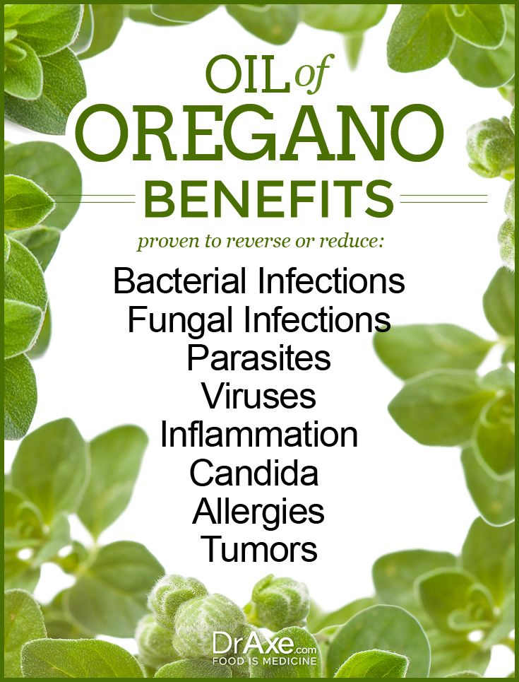 Oregano Oil Benefits for Infections, Fungus & More | Lyme | Oregano
