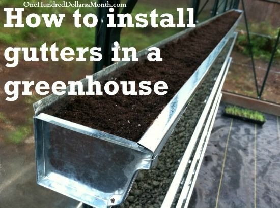 comment faire pour installer goutti res dans une serre tomates and co pinterest. Black Bedroom Furniture Sets. Home Design Ideas