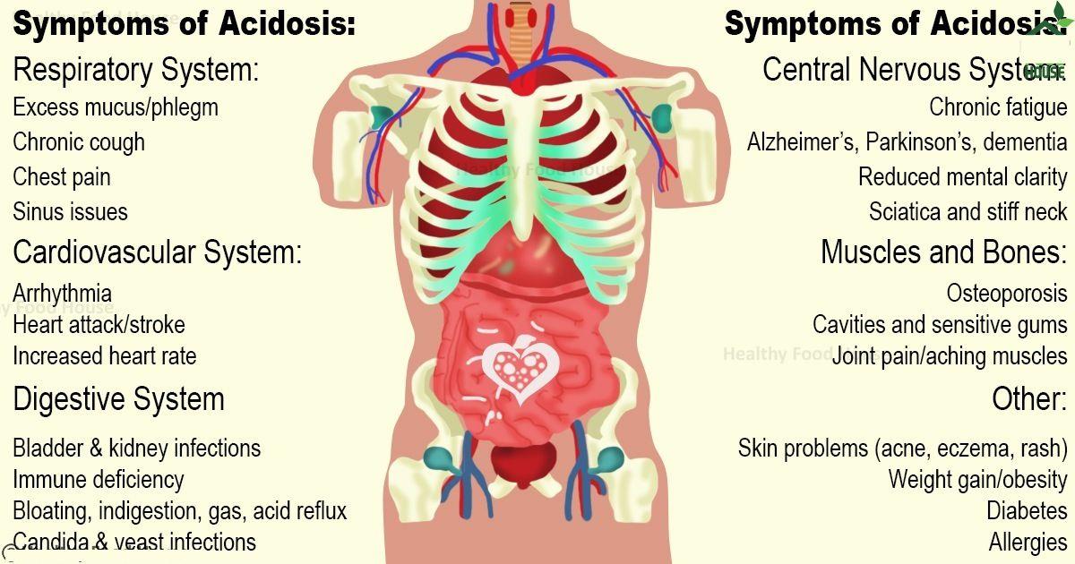 Acidity Affects All Body Organs The Skin Intestines Brain Bones