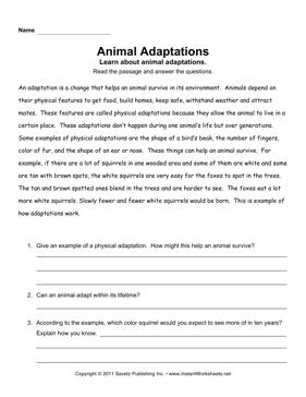 animal adaptations comprehension classroom science animal adaptations science classroom. Black Bedroom Furniture Sets. Home Design Ideas
