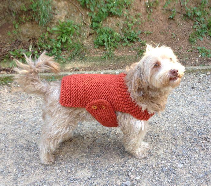 Tutorial DIY para hacer un jersey para perro con telar  f7579184548
