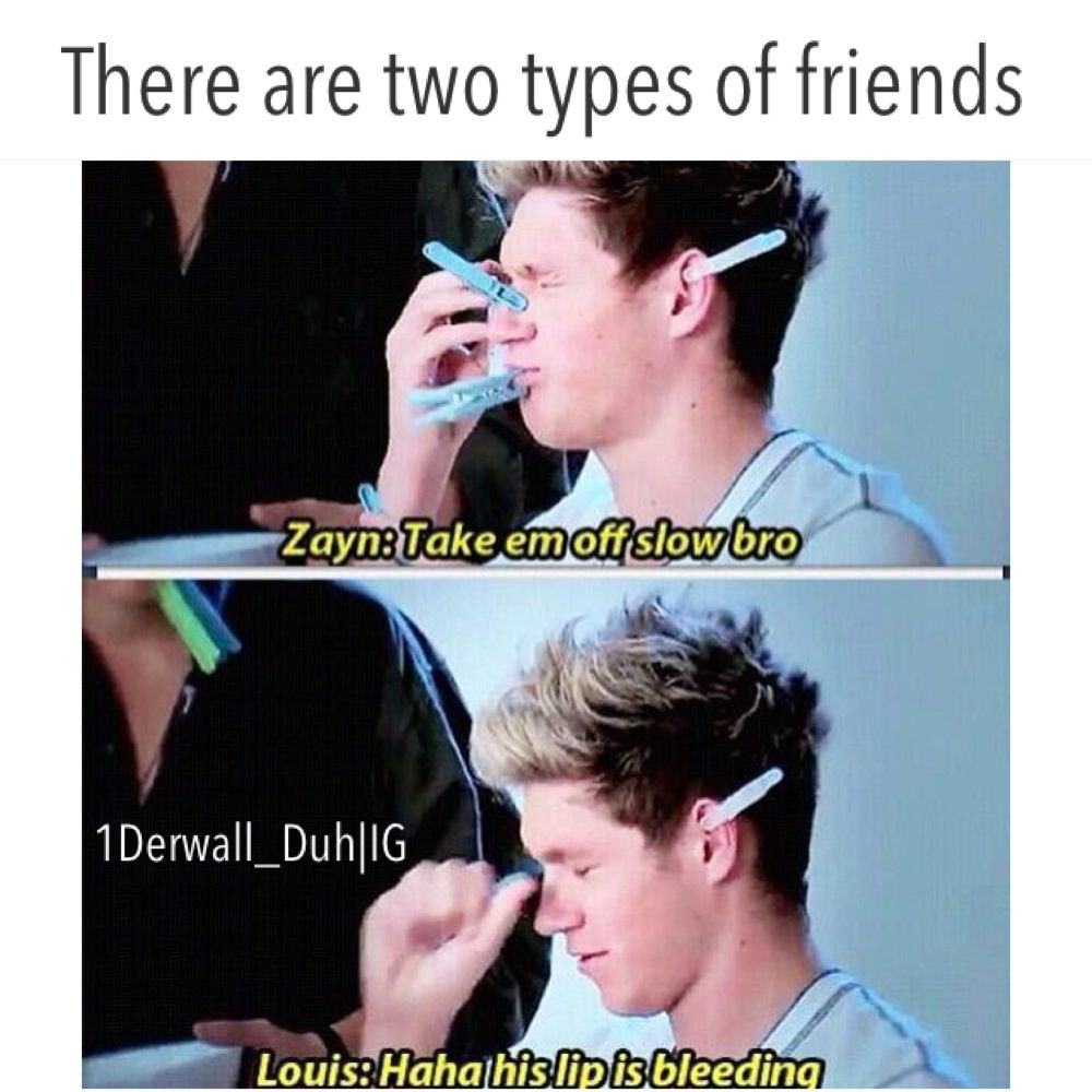 1502a7c9a75ad42df86a5372b02fc6e0 one direction meme one direction pinterest meme, niall horan