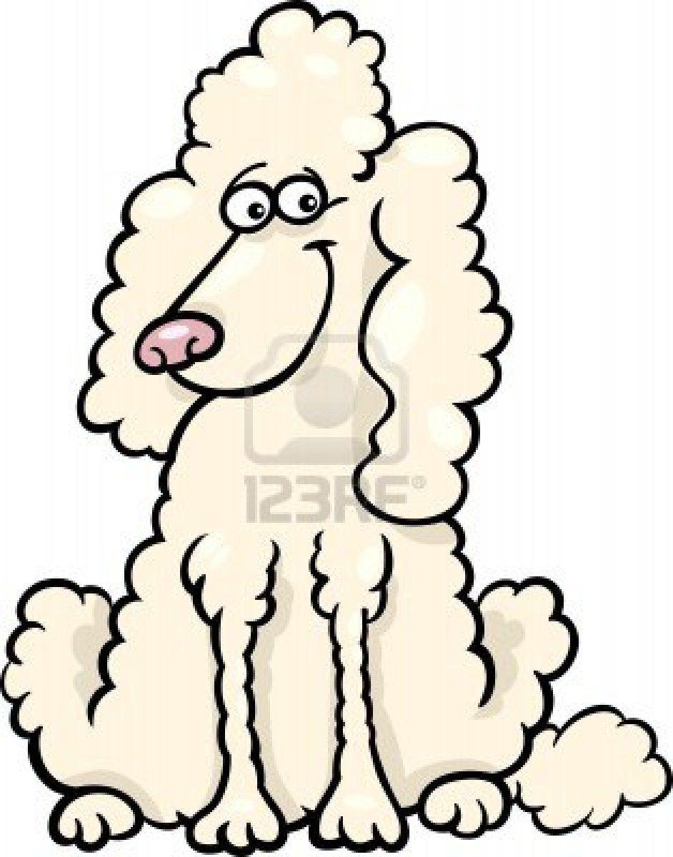 Cartoon Illustration of Funny Purebred White Poodle Stock Photo ...