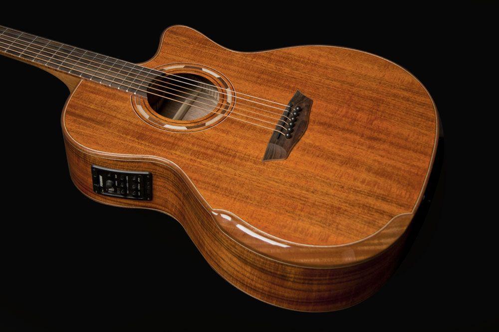 Washburn WCG55CE Acoustic Guitar