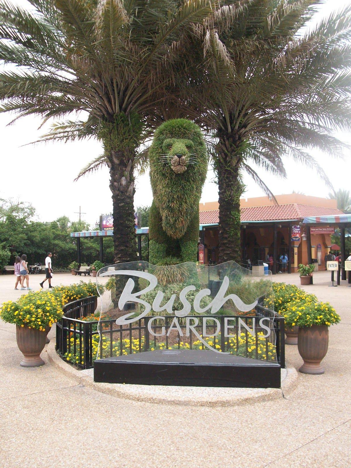Busch Gardens Parks In Florida Garden Ftempo