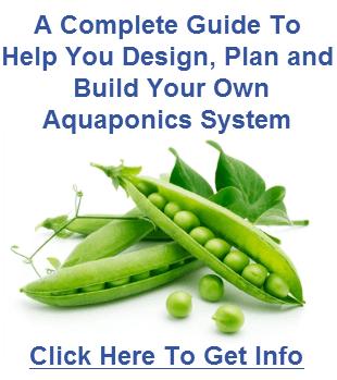 6_aquaponics_designRS