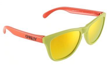 verre lunette oakley frogskins