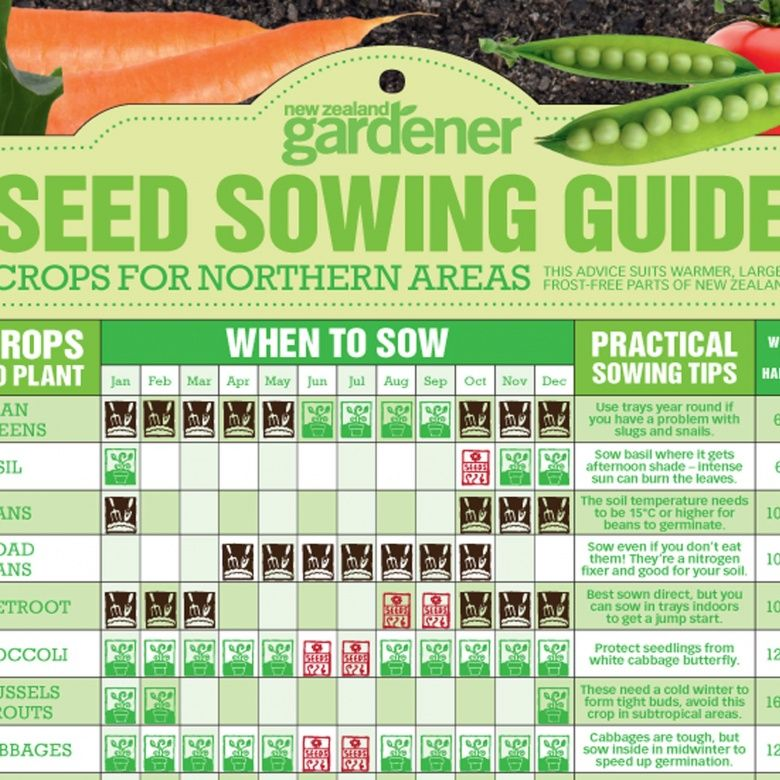 Seed sowing guide nz gardenernz gardener free download also the best nature calendars images on pinterest in seasons rh