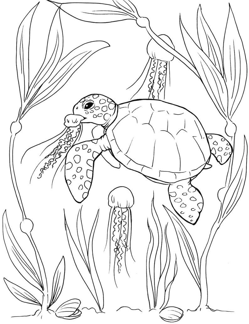Sea Turtle coloring pages   Etsy in 18   Turtle coloring pages ...