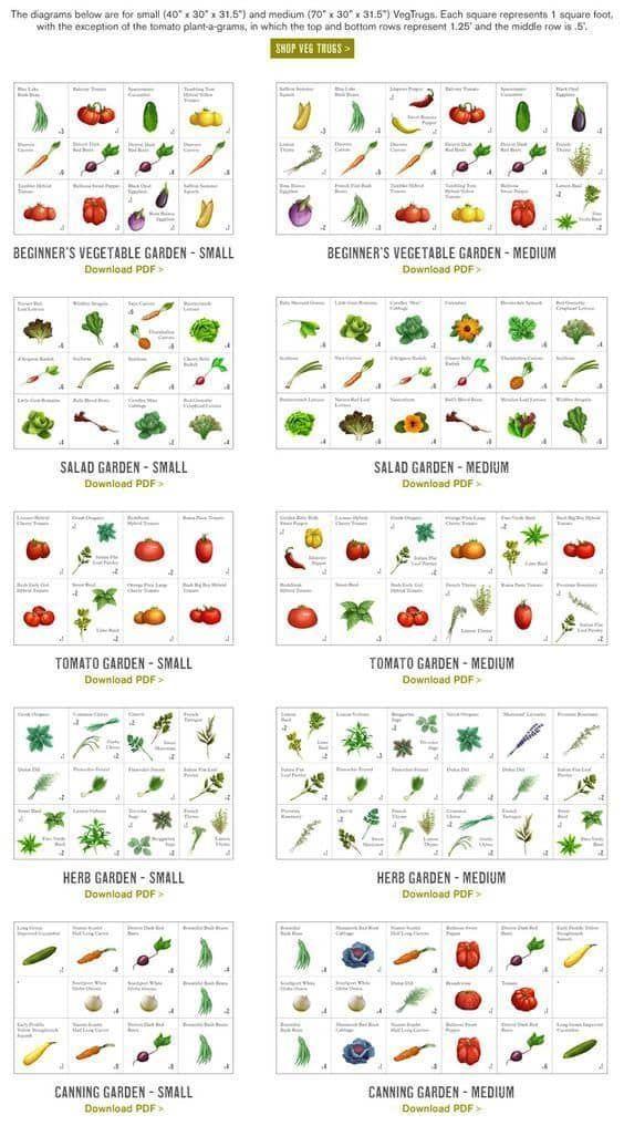 Small Backyard Garden Ideas  TipsseparatorSmall Backyard Garden Ideas  Tips