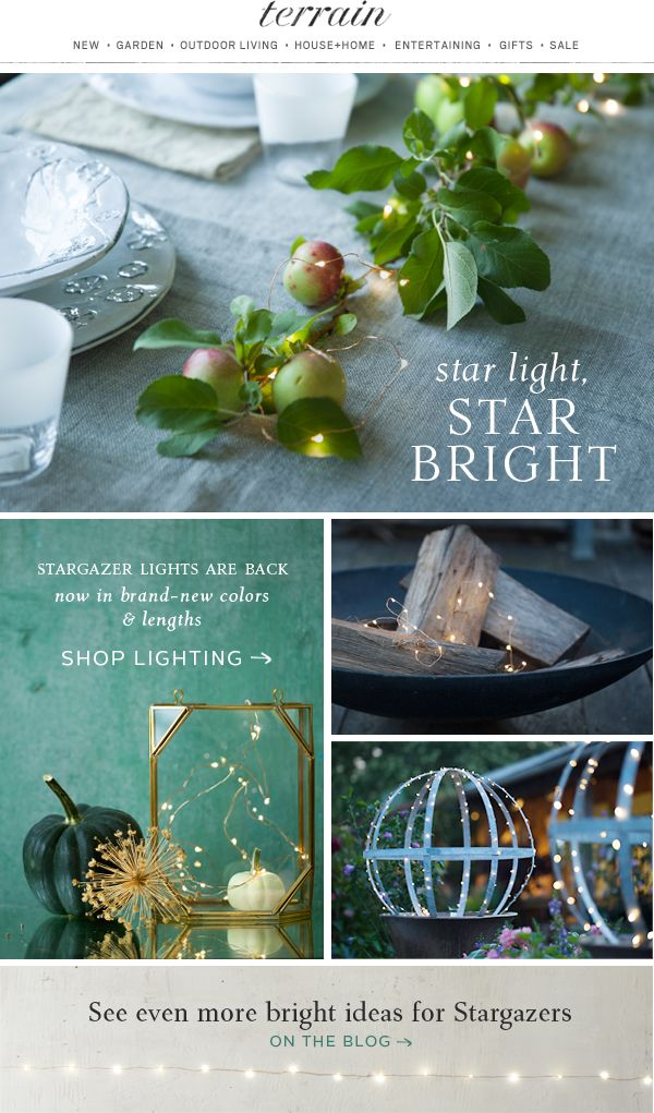 Star light, star bright-- #new #Stargazer #Lights are illuminating autumn #decor at #shopterrain August 18