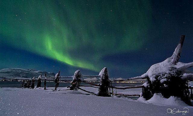 Winter Wonderland | Flickr - Photo Sharing!