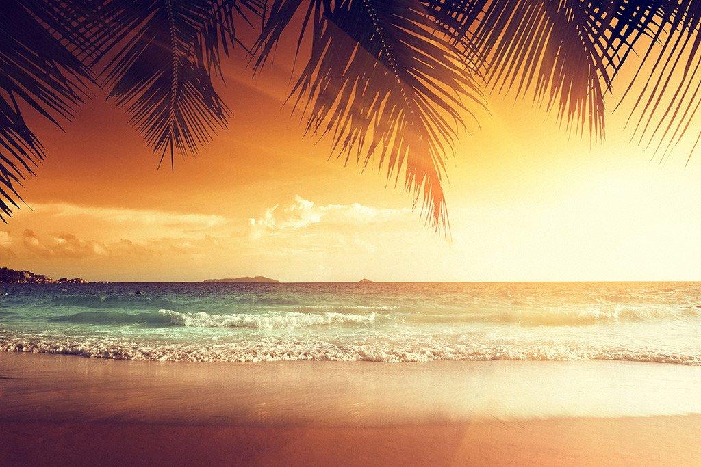 Tropical Beach Palm Trees Ocean Sea Nature Sunset Landscape Poster Sunset Landscape Landscape Poster Beautiful Sunset