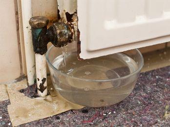 Badezimmer renovieren: So werden Fliesen, Fugen und Co ...