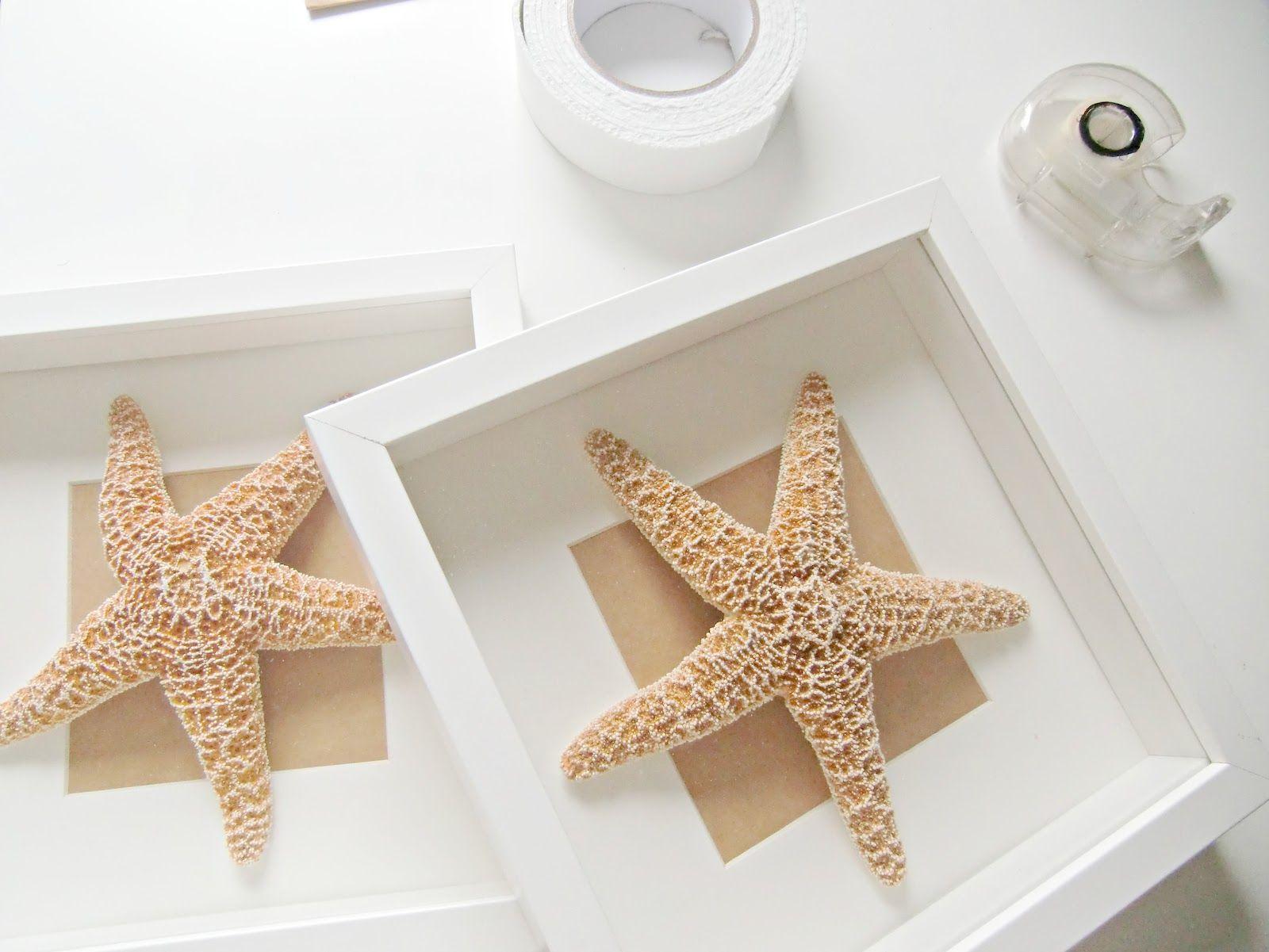 Vicky\'s Home: Diy Cuadros de Conchas y estrellas de mar / Diy Shell ...