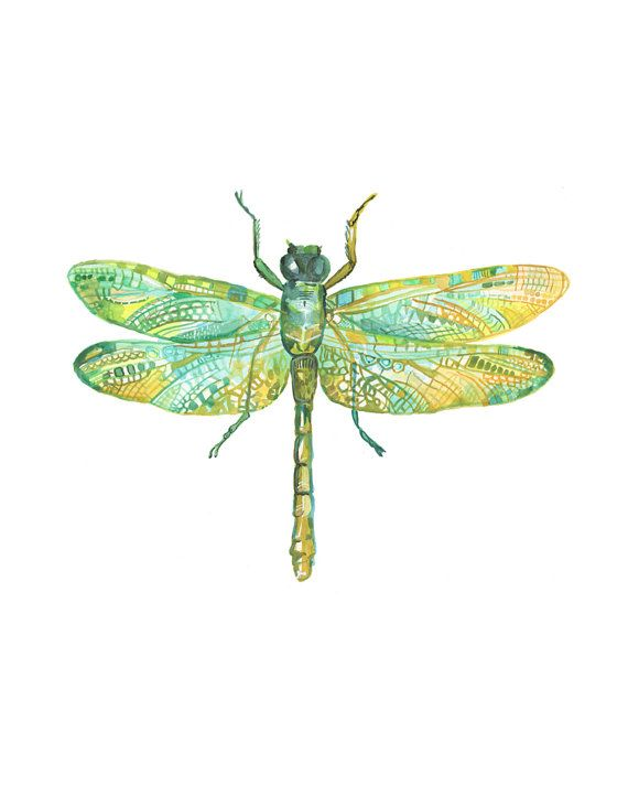 Dragonfly Art Print - Illustration - Watercolor Insect | Art things ...