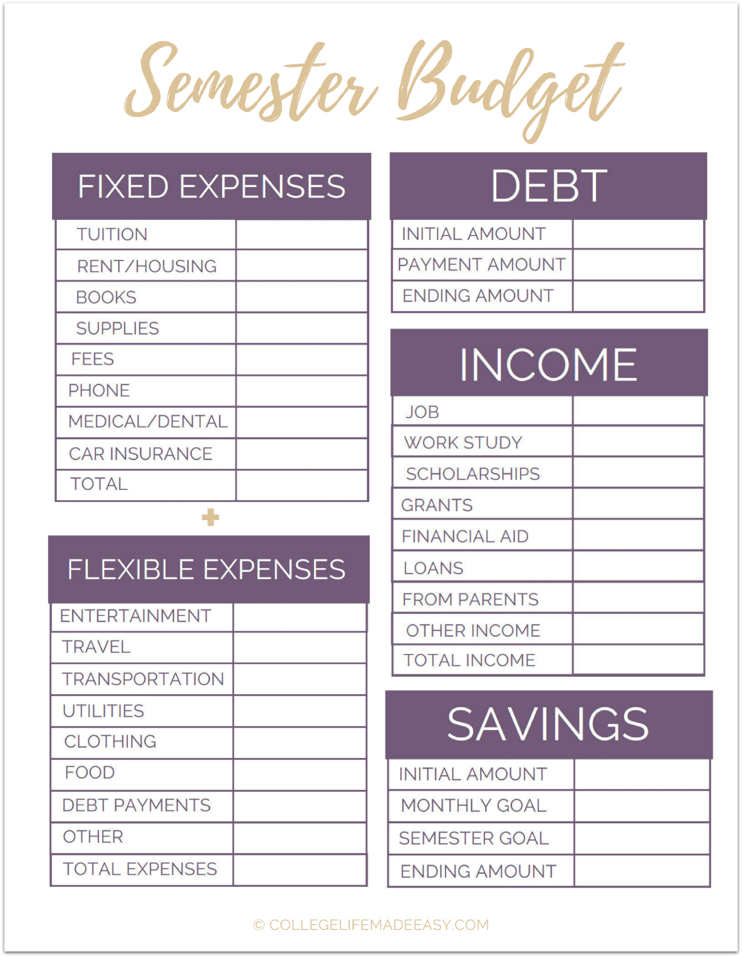 Fix Your Finances Asap With My Free Simple Monthly