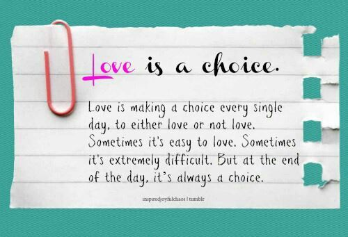 Choice Of Love Erfahrung