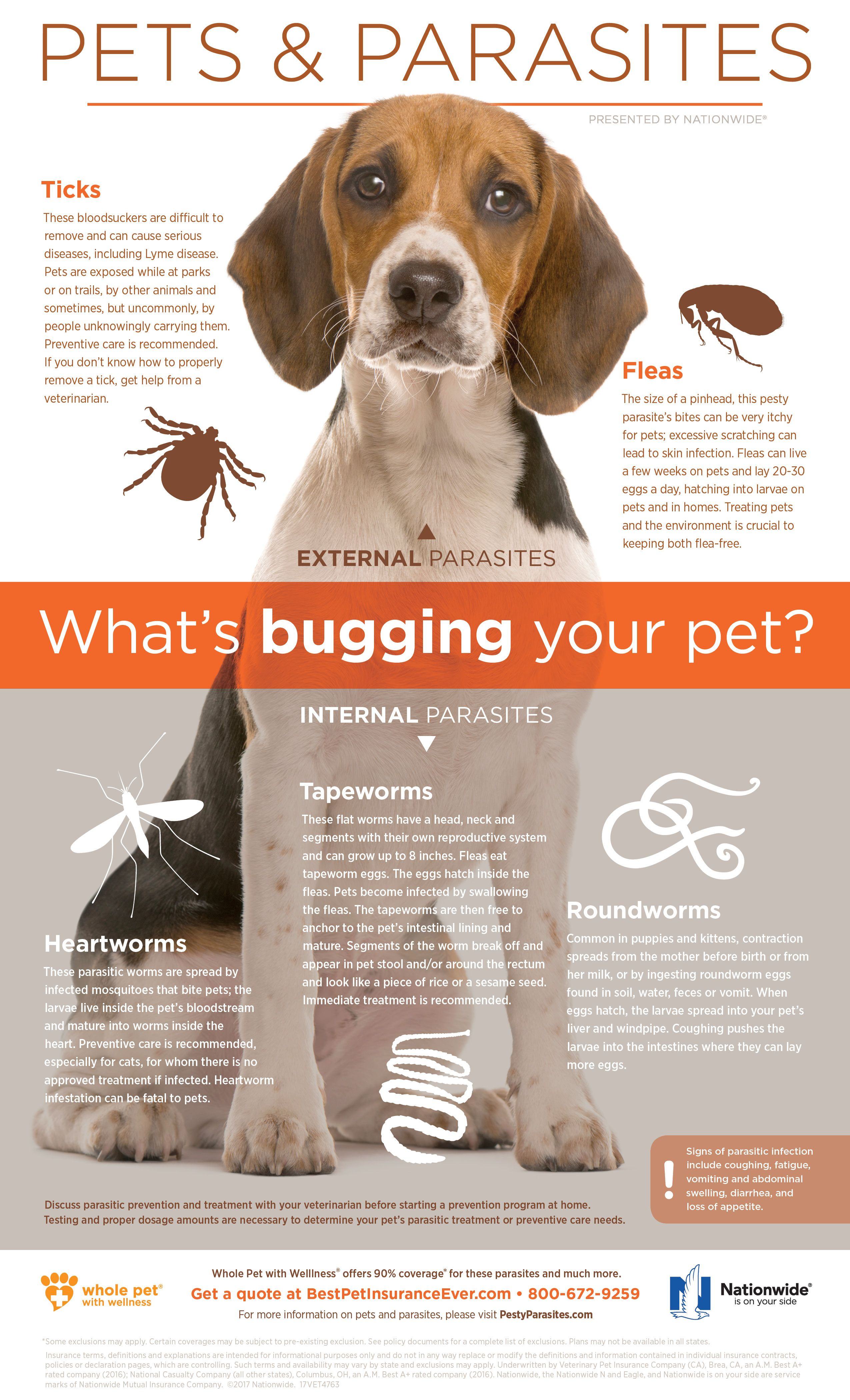 The Unseen Enemy Pet insurance reviews, Pet insurance
