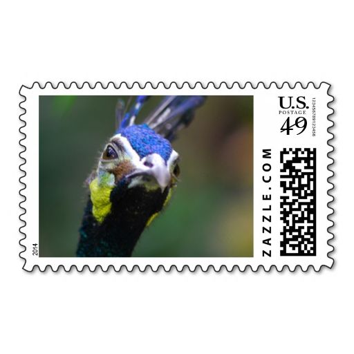Peacock 2 postage. Wanna make each letter a special delivery? Try to customize this great stamp template and put a personal touch on the envelope. Just click the image to get started!