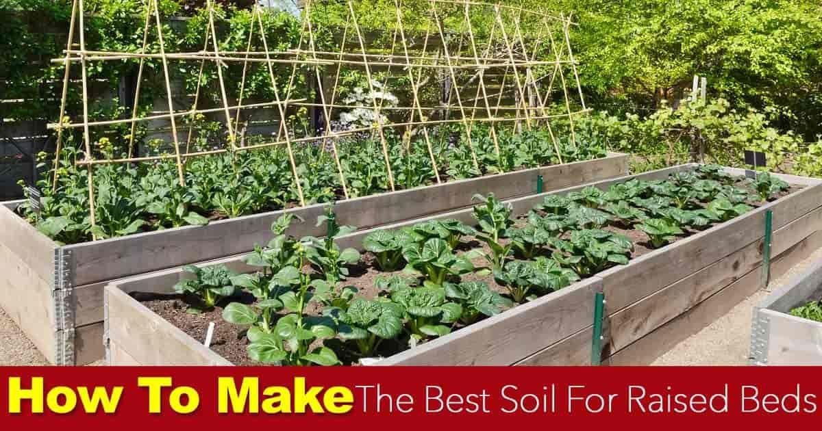 Soil For Raised Beds How To Make The Best Raised Bed Soil Soil