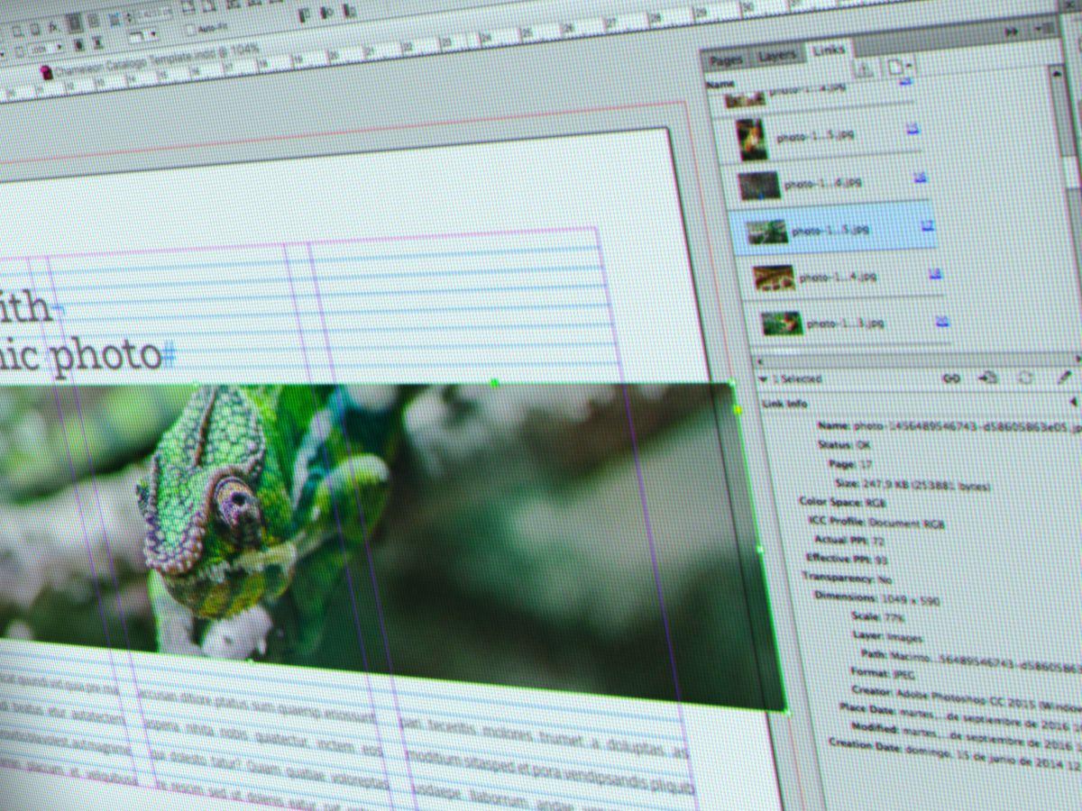 Chameleon es una plantilla de un brochure horizontal de (28 x 18 cms ...