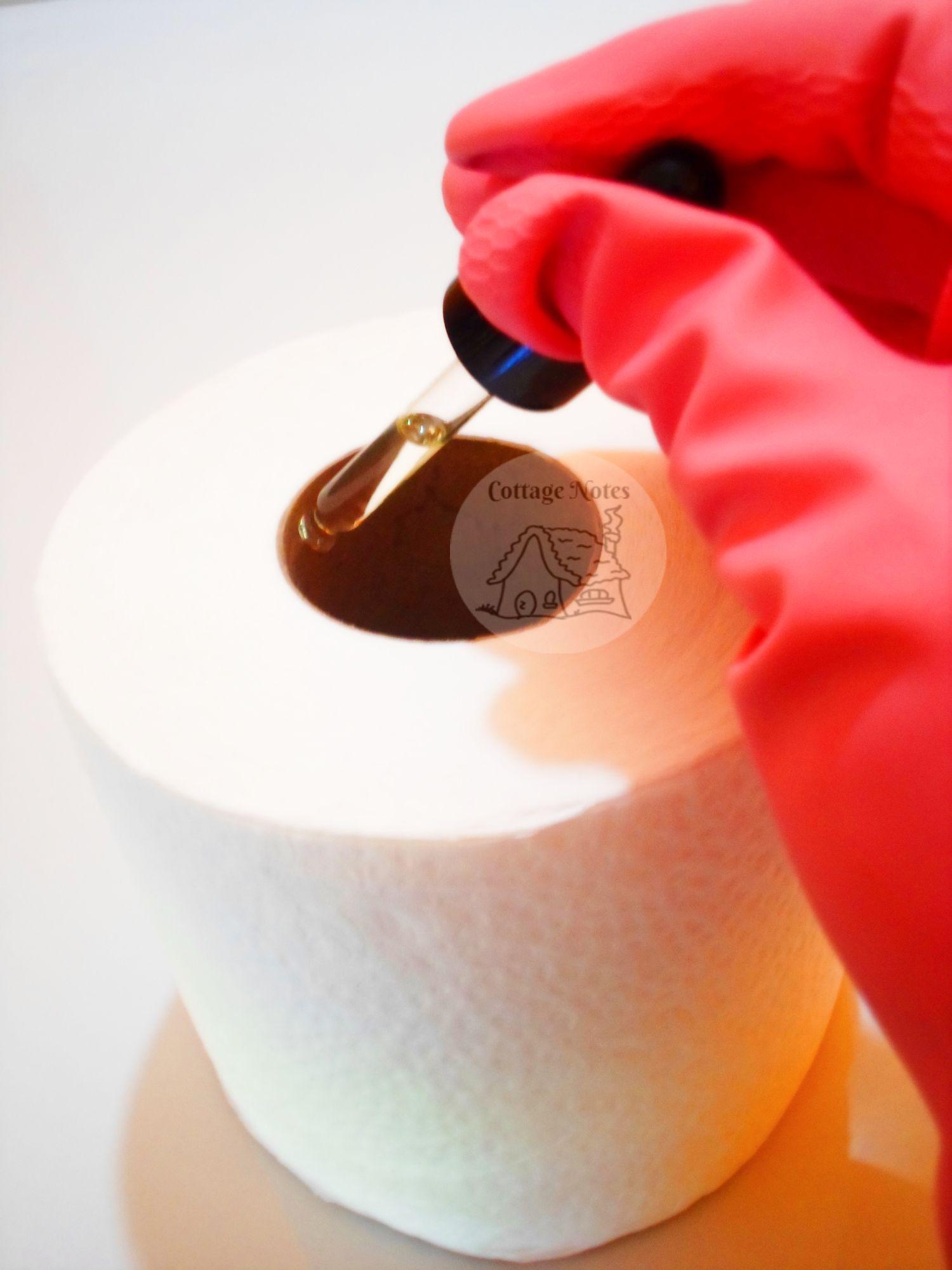 essential oil hacks to make your home smell amazing oils rh pinterest com