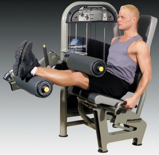 Leg fitness exercises on equipment roman chair for the