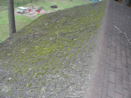 Zinc Strips Prevent Moss Growth On Roofs Roof How Do You Clean Moss
