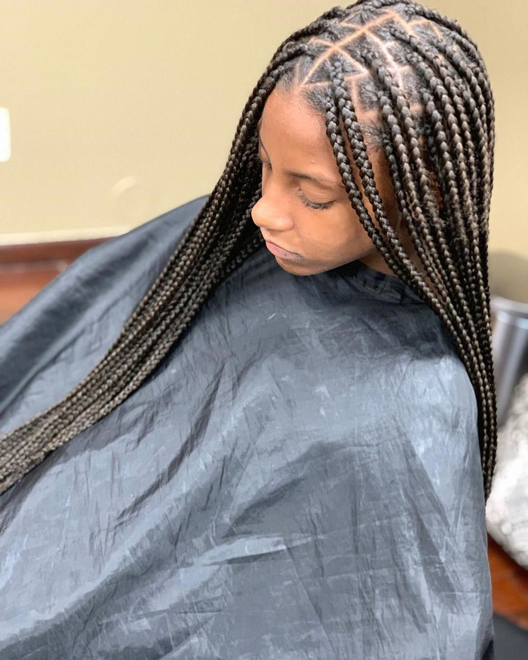 70 Braided Hairstyles For Winter 2018 Box Braids