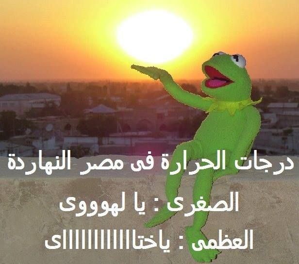 Pin By Emad Fouad On شباب علطول Crazy Funny Memes Funny Comments Funny Messages