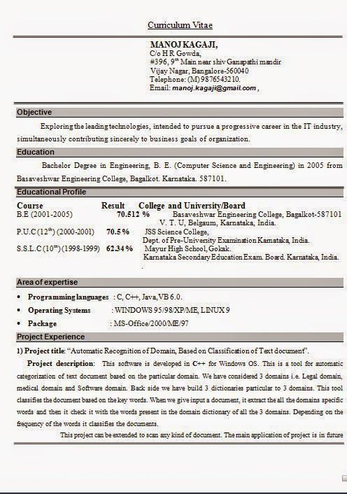 format of professional resume Sample Template Example ofExcellent - experienced it professional resume samples