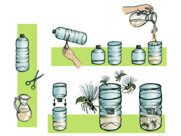 Comment fabriquer un pi ge gu pes gardens - Desherbant naturel efficace ...