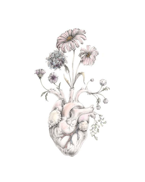 Blooming Heart by MomeRathGarden  illustrationals  Pinterest